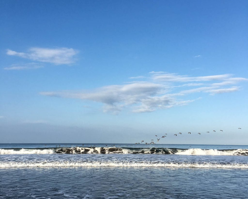 waves, birds at Jaco beach