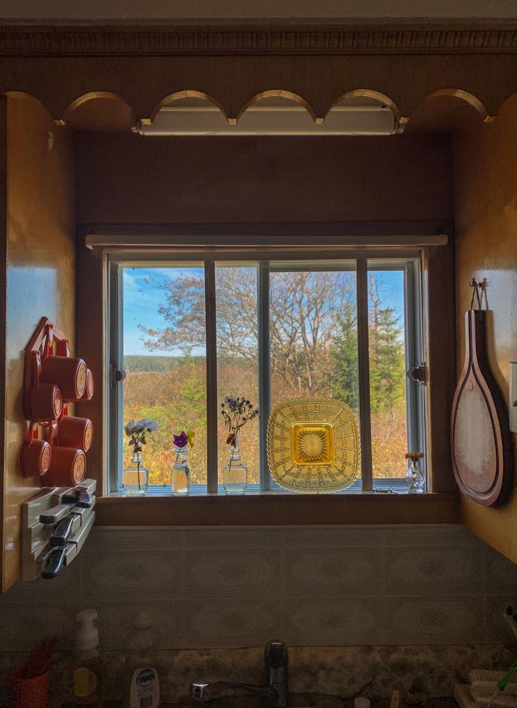 Kitchen Window, Ecum Secum