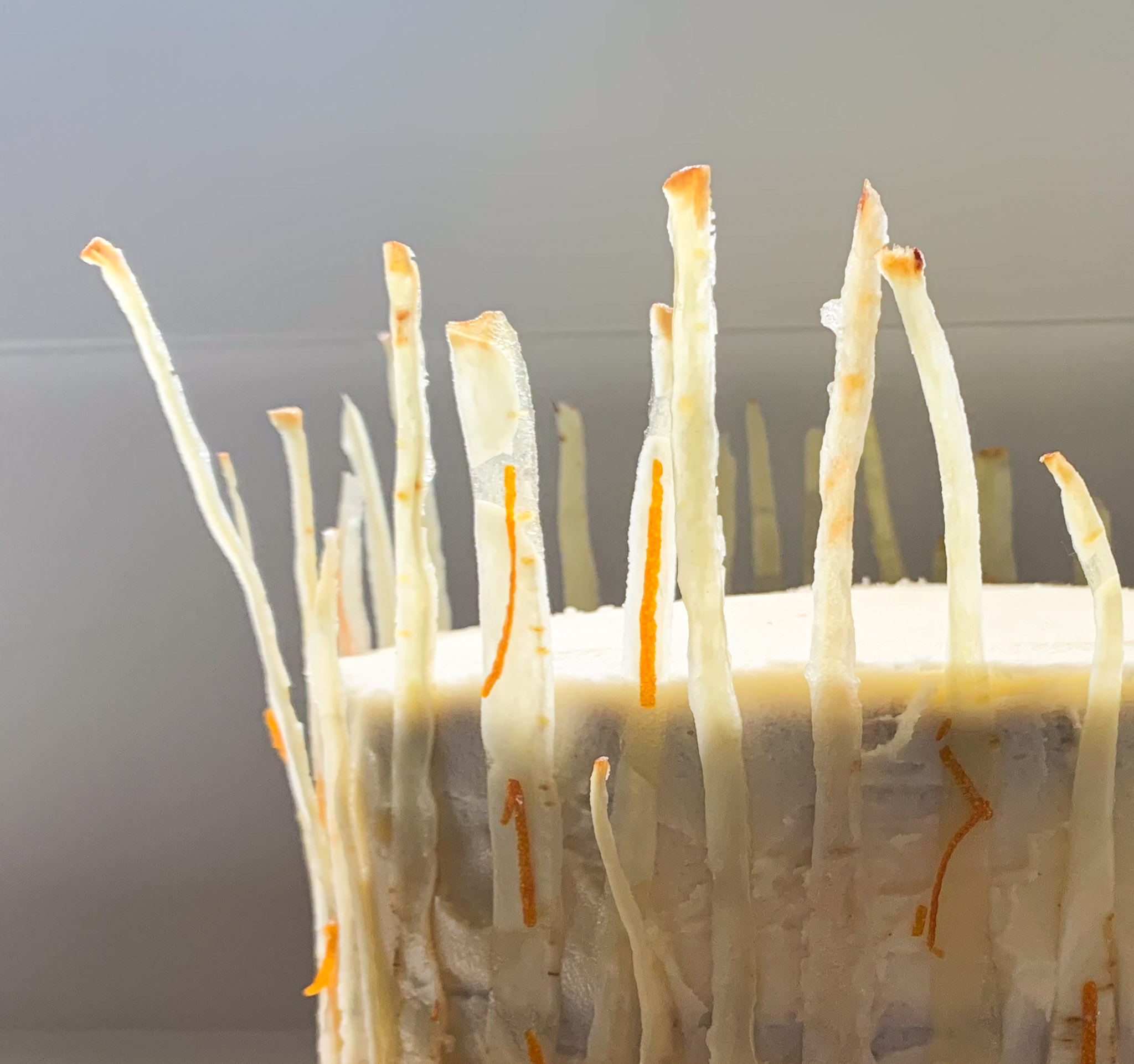parnsip cake with candied parsnips