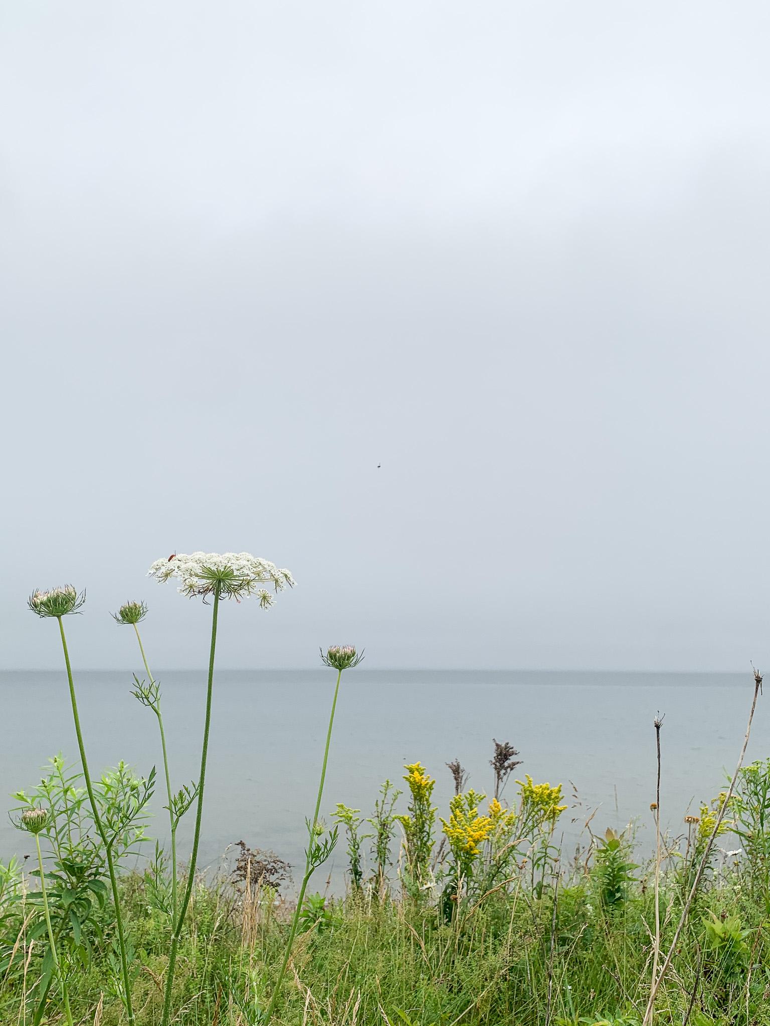 The Northumberland Strait