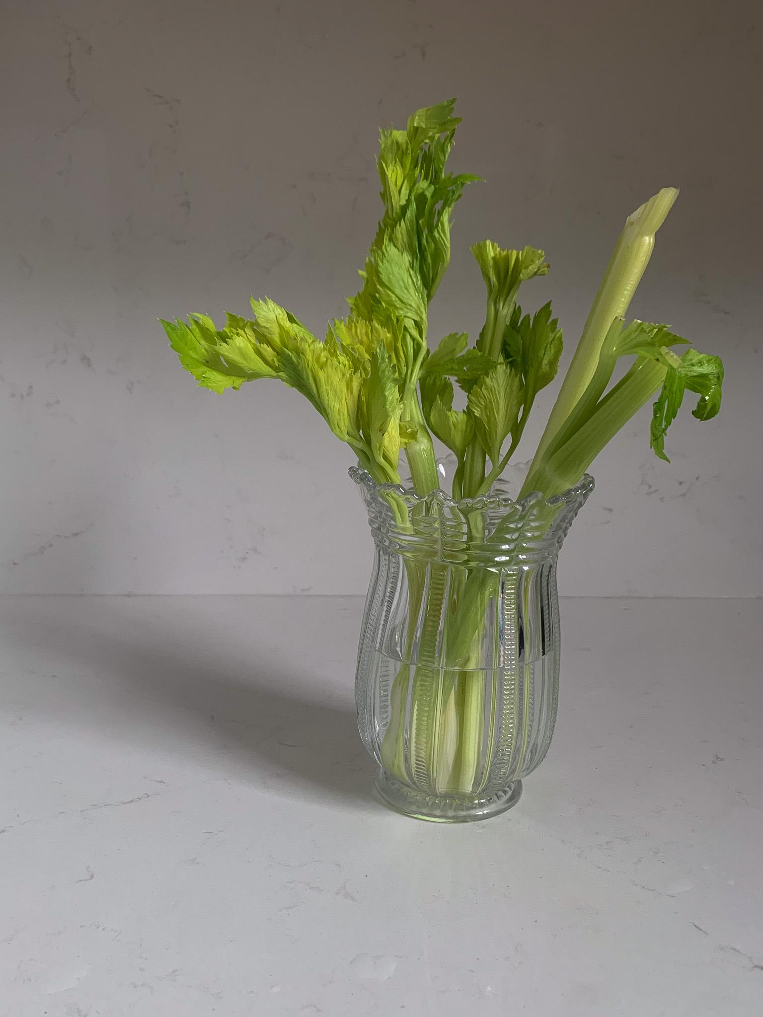 celery in a celery vase